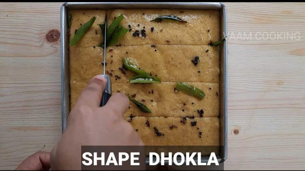 instant-khaman- dhokla-shape-dhokla