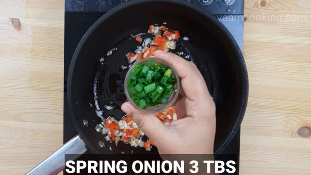 schezwan-fried-rice-spring-onion